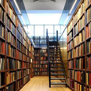 Библиотеки Беково